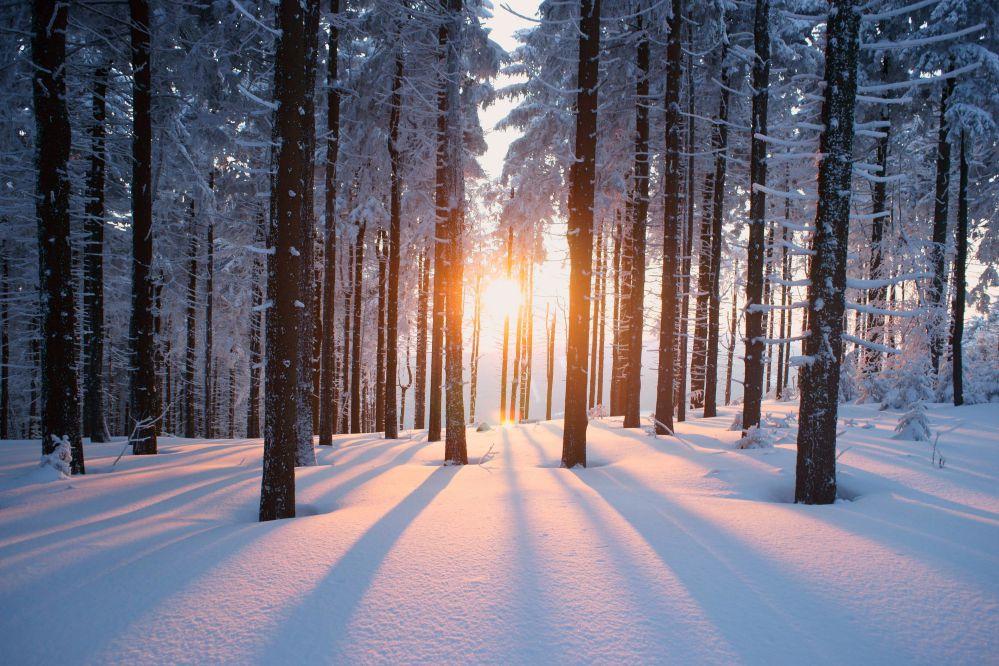 Offerta Black Winter